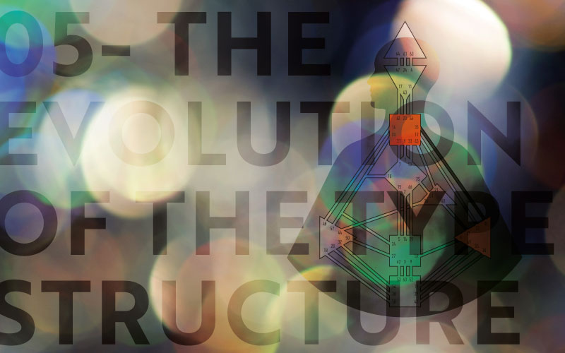 05 The Evolution of the Type Structure